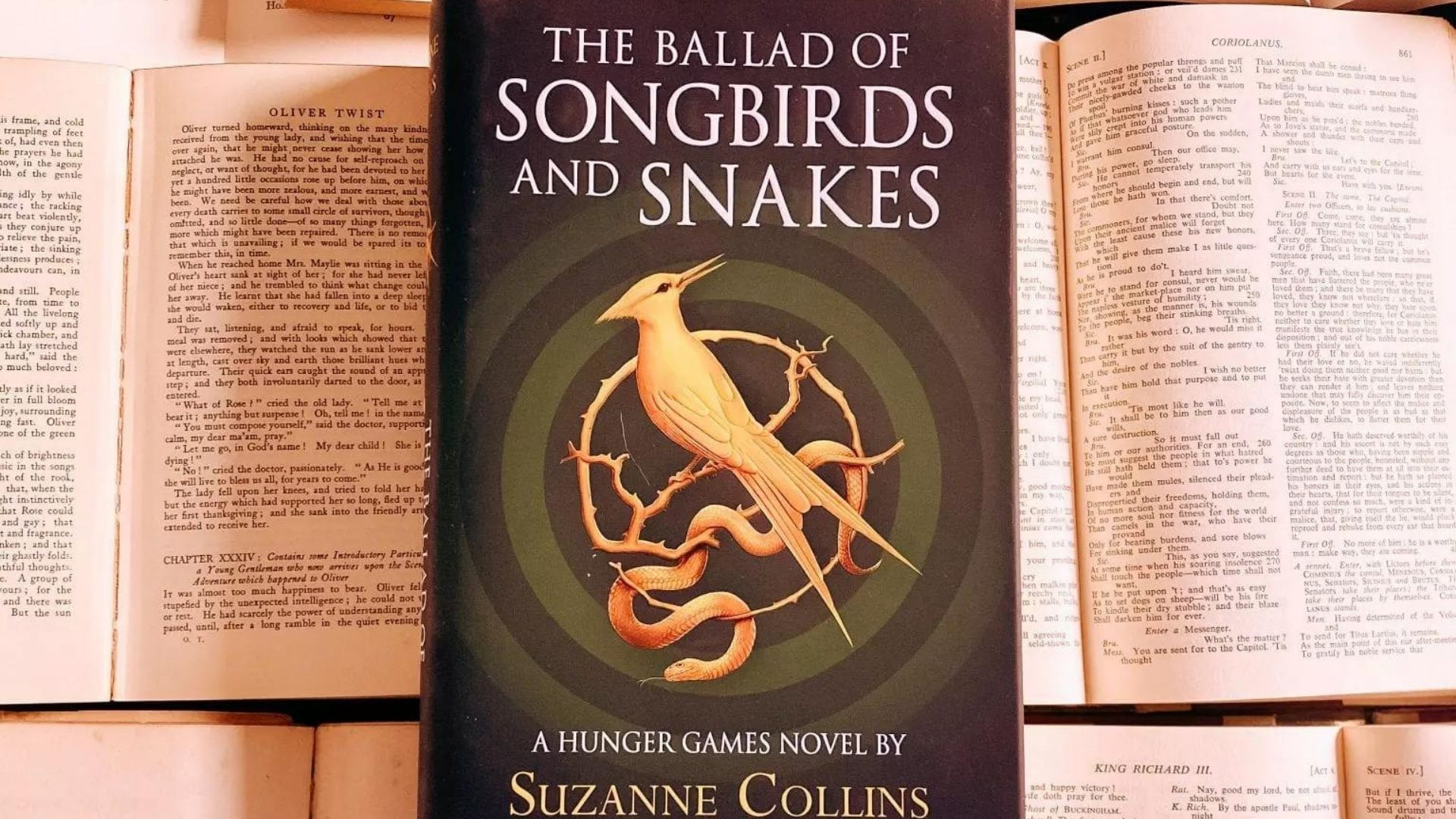 Songbirds and Snakes Book Review @FromBeeWithLove Bronte Huskinson